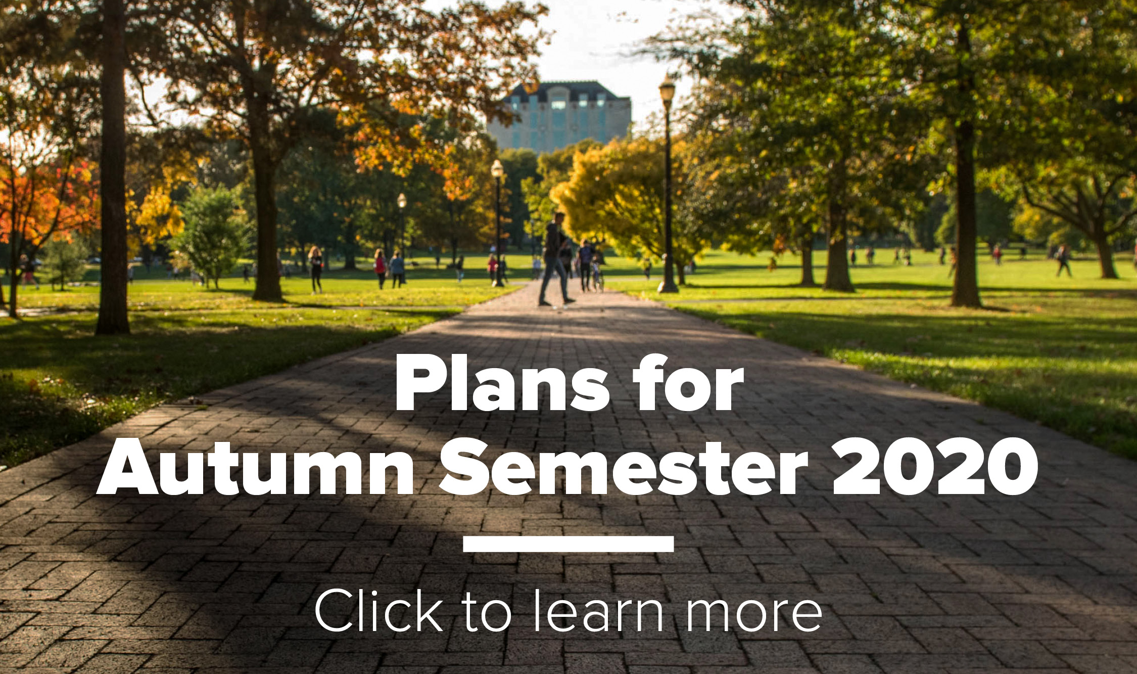 Plans for Autumn Semester 2020